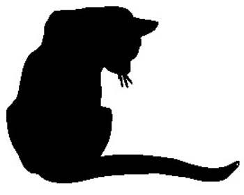domestic-cat12.jpg