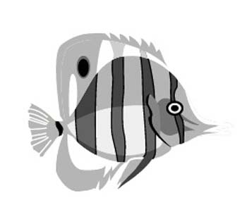 fish14.jpg